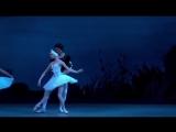 Лебединое озеро_Красивый танец со скрипкой соло  акт 2 Танцы лебедей
