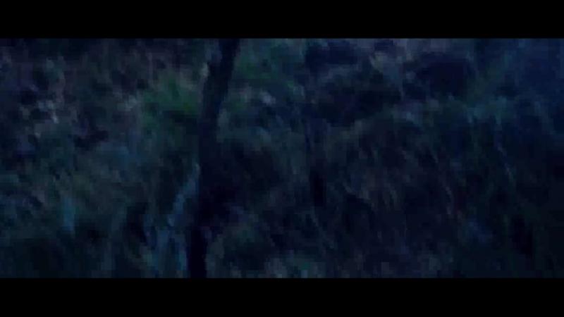 Downhill/ Скоростной спуск (2016 - 2017)