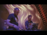 Carbon Based Lifeforms - MOS 6581 (Live at Ozora Festival 2017)