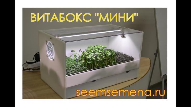 Настольная ферма ВитаБокс Мини