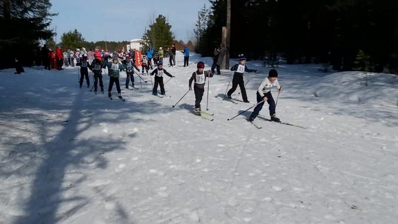 Лыжные соревнования на кубок А.М. Киприянова