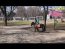 ПРИКОЛЫ ПРО ЖИВОТНЫХ Самые Смешные и Прикольные Видео с Животными ЛУЧШЕЕ!