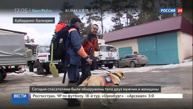 Новости на Россия 24 • На Чегете найдены тела еще трех погибших