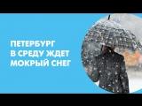 Петербург в среду ждет мокрый снег