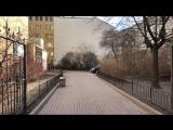 Прямая трансляция пикетов в защиту сквера на Кузнечном переулке