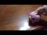 Melanie Pity Party Pink Dog Toy