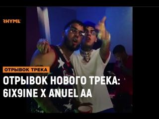 ОТРЫВОК НОВОГО ТРЕКА: 6ix9ine x Anuel AA [Рифмы и Панчи]
