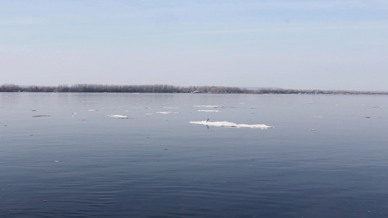 Плавающий лед