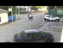 В г.Миллерово было совершено дерзкое нападение и попытка убийства