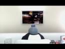 Мохнатики (Fur TV) S1E4 Гоблин
