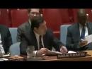 """Представитель ООН Владимир Сафронков: """"В глаза смотри"""""""