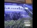 В Геленджике мужчина упал на автомобиль с пешеходного моста