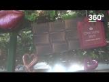 Японцы принимают шоколадную ванну