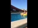 Юльча плавает