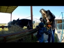 Поход Алима на страусиную ферму