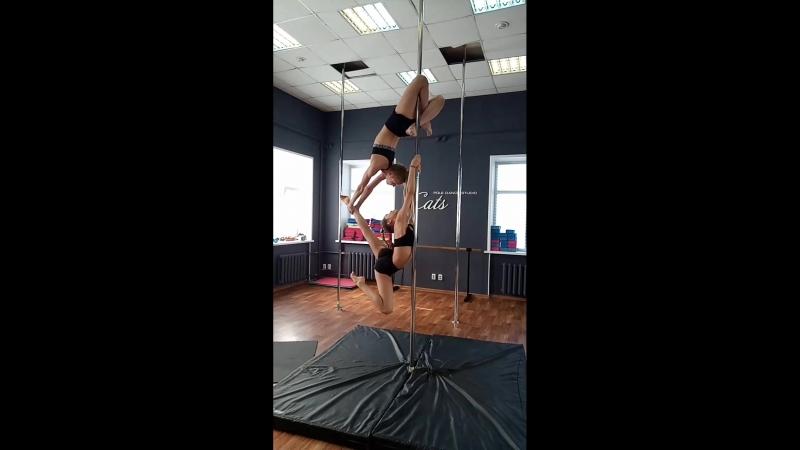 ученцы pole dance studio cats