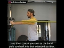 WHY I WANT WANT EVERYONE TO TRAIN BICEPS