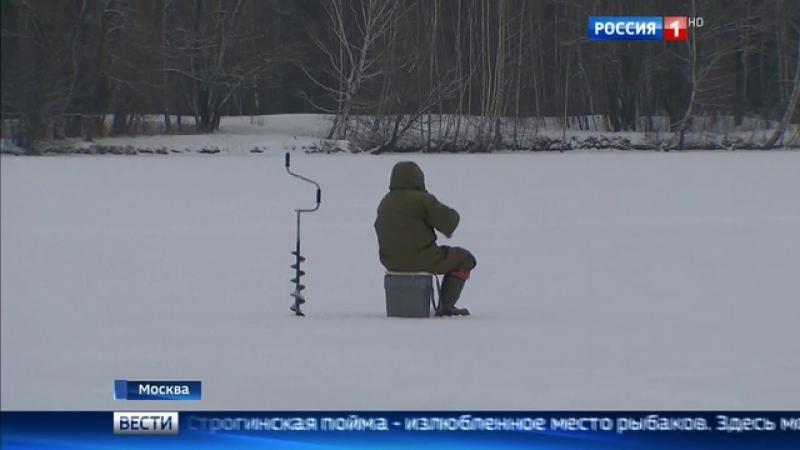 Вести-Москва • Вести-Москва. Эфир от 10 января 2017 года (11:40)
