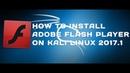 Adobe Flash Player на Kali