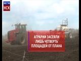 Посевная кампания в Новосибирской области: инфографика