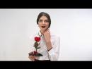 Notta Belle - Роза в колбе, по мотивам мультфильма Красавица и Чудовищ