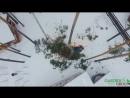 Снос валка и обрезка деревьев путем промышленного альпинизма