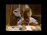 Alf Quote Season 4 Episode 4 Под контролем