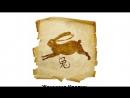Сборник гороскопов. - Сексуальный гороскоп для женщин восточных знаков.