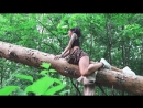 Съемка в лесу после урагана. Гнев. Страйки. Hurricane Forest