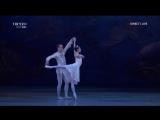 Феликс Мендельсон - Сон в летнюю ночь (II действие балета) (С-Петербург, 2018)