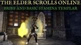 TESO: Stamina Templar Brief and Basic