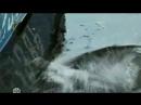 Икорный барон 6 серия bestfilmi (480p).mp4