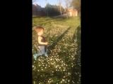 Маленький принц и цветы