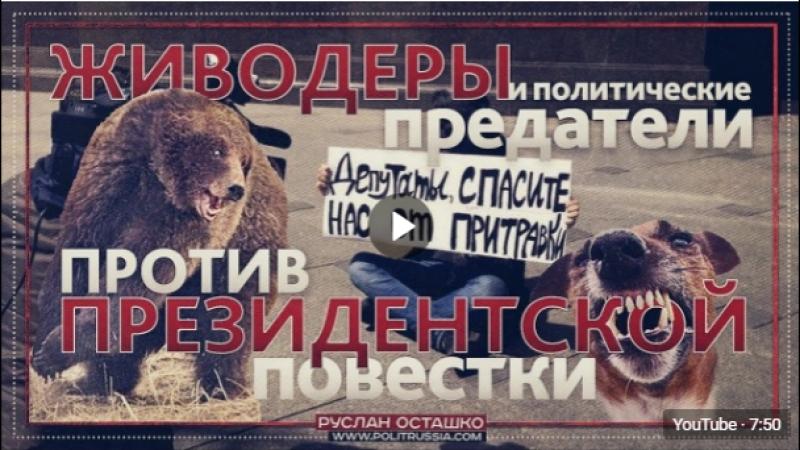 Живодеры и политические предатели против президентской повестки (Руслан Осташко)