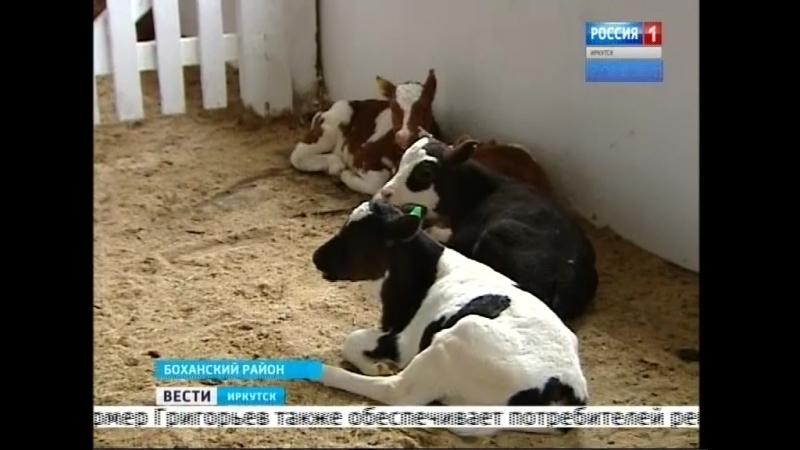 Перевести сельхозтехнику на газ предложил аграриям губернатор Иркутской области