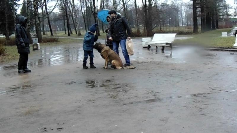 Илья в эпизоде Колыбель над бездной10.04.14