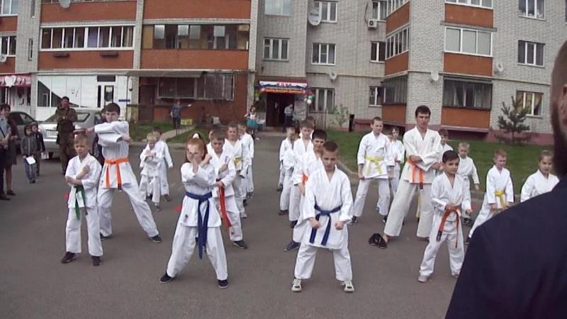 Видео 4 - Показательные выступления на День Рождения нашего Клуба спортивных единоборств имени Дмитрия Донского!