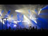 Вернули мне мой 2007 :)  (Animal Джаz)