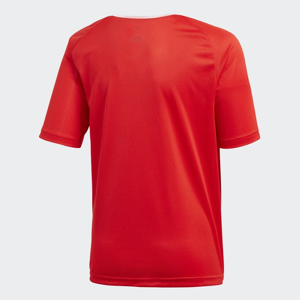 Домашняя игровая футболка Россия Fan