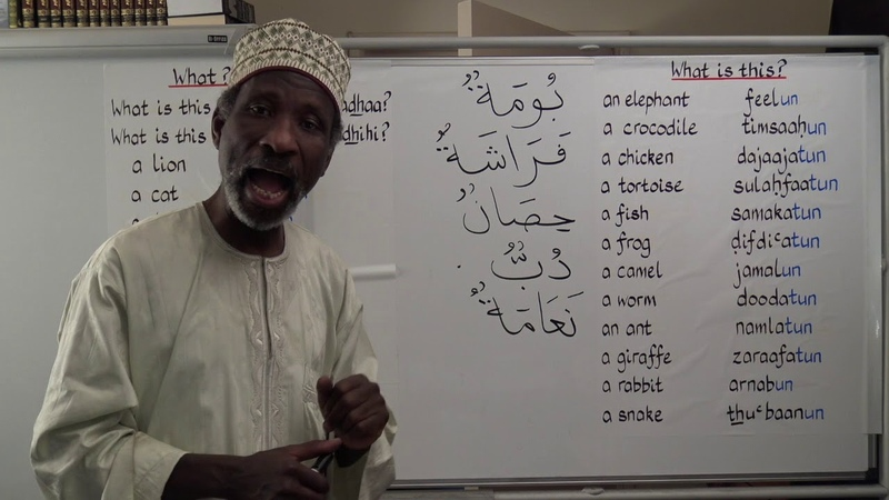 Gateway to Arabic Book 2, Lesson Ten How to ask What is... (Maa...)
