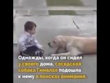 Собака и мальчик с синдромом Дауна. Доброта и забота доказывают, что собаки лучшие друзья...