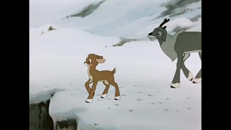 Храбрый олененок 1957 Союзмультфильм
