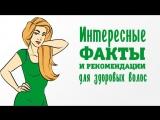Интересные факты и рекомендации для здоровых волос [Шпильки | Женский журнал]