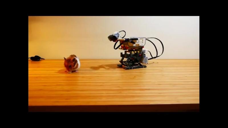 Новое видео с LEGO MINDSTORMS Education EV3 от Rocky Lau