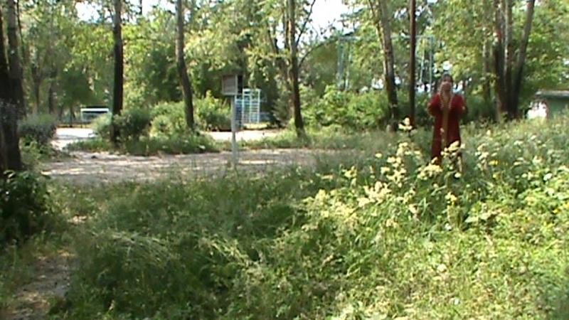 уникальное видео со съемок фильма ЛЕСНАЯ СКАЗКА (1)
