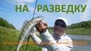 Ловля судака и окуня на спиннинг Как искать рыбу на незнакомом водоеме Crazy Fish