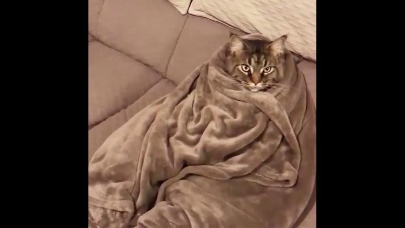 Тепло и уютно