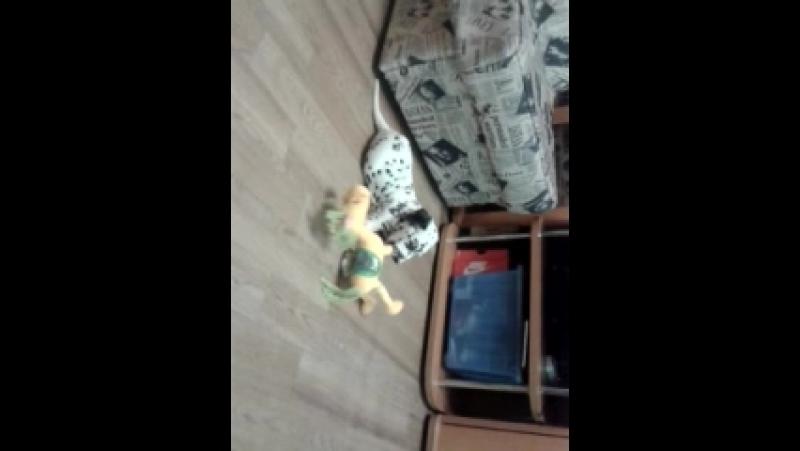 Video-2014-07-15-16-25-06