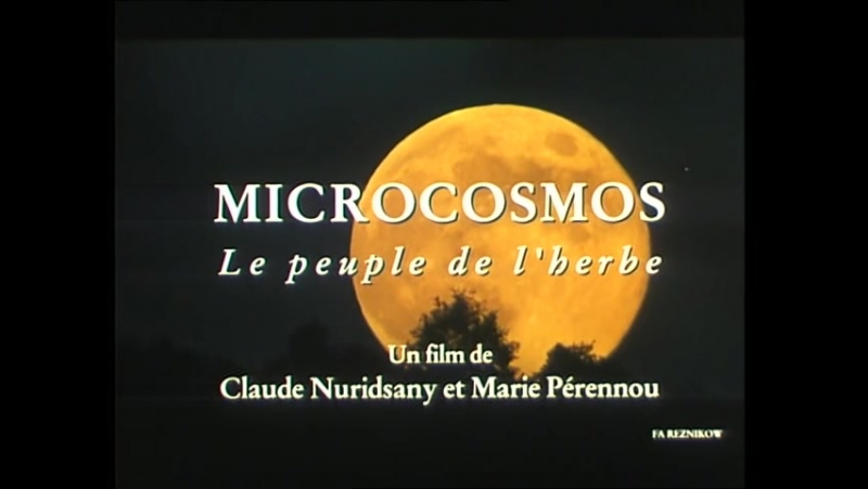 Микрокосмос | Microcosmos: Le peuple de l'herbe