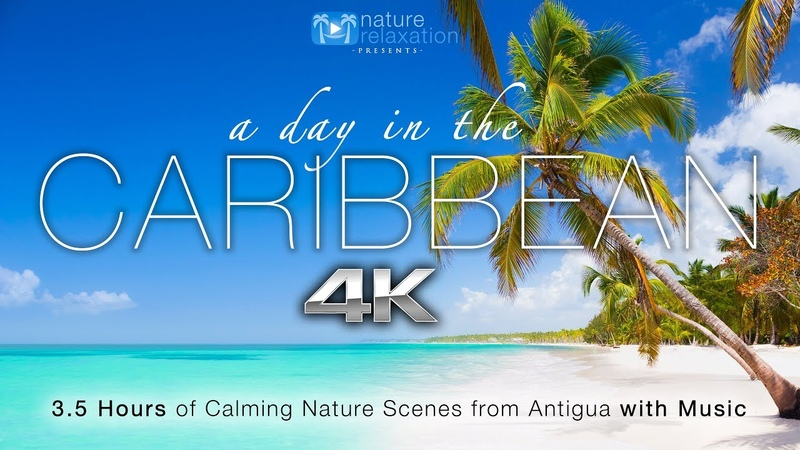 A Day in the Caribbean 4K 3.5 HR Nature Relaxation™ Ambient Film Calming Music